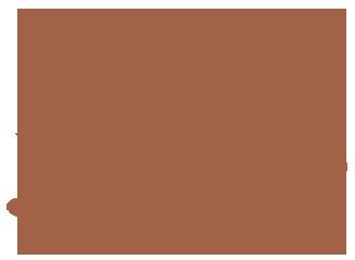 Dear Jervois Cafe – Herne Bay, Auckland